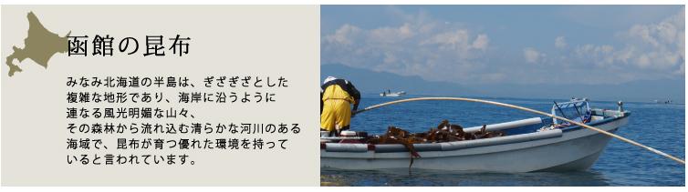函館の昆布バナー
